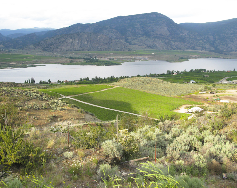Toward Osoyoos