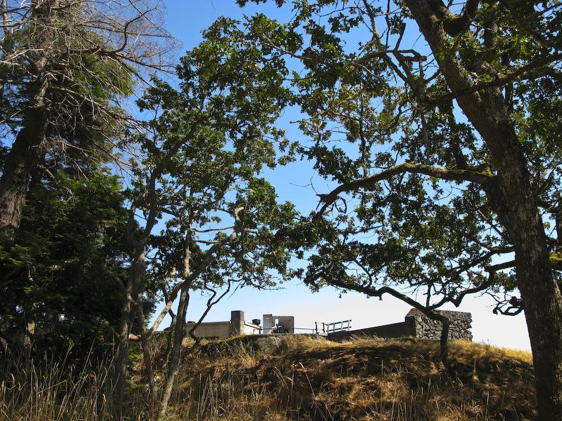 Fort Rod Hill Gary Oaks